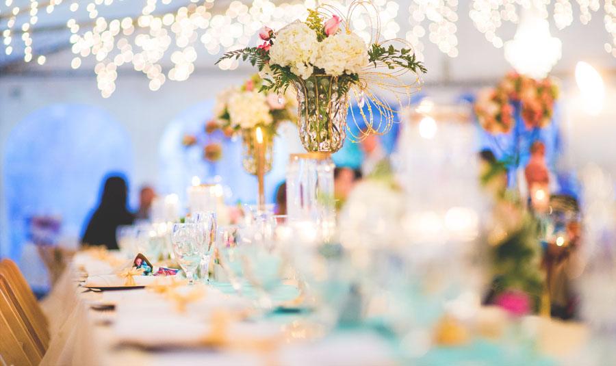 Yuma weddings and special event vendors yuma weddings bustle bump wedding planning junglespirit Gallery